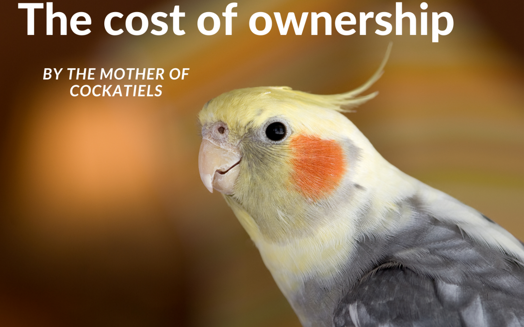 The cost of ownership – an important but rarely spoken about issue.